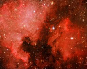 2018_Aug_NGC7000 & Pelikannebel